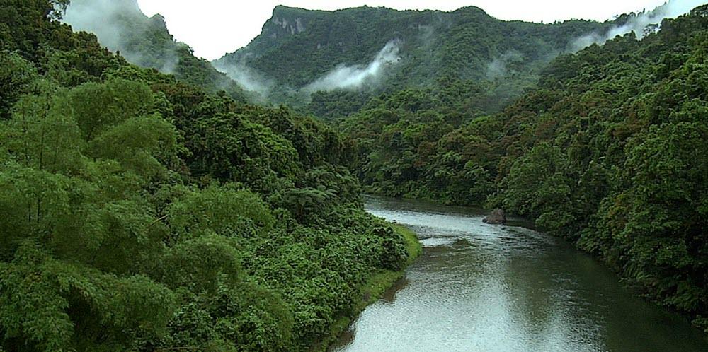 Río Platano Biosphere Reserve